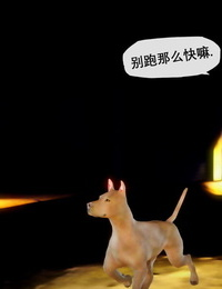 KABA 皮物与犬 Chinese